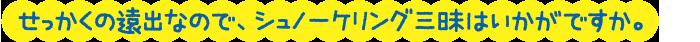ジンベイシュノーケリング+スミロン島シュノーケリング